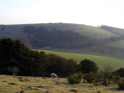 A panoramic view of Old Winchester Hill.