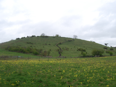 A photograph of Olivers Hill Fort.