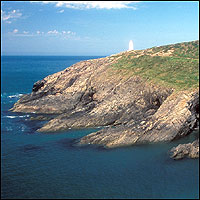 A view of the rugged coastal path of Pembrokeshire.