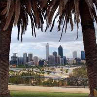 General view of the skyline of downtown Perth, Western Australia, seen through palm trees.