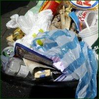 A plastic bag languishes in a rubbish bin.