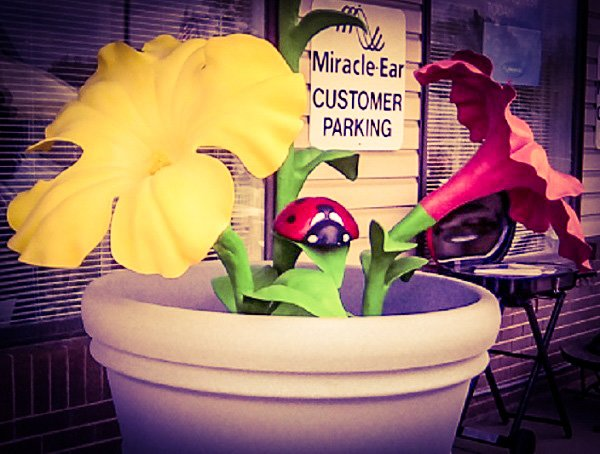 Audrey the plastic flower and friends.