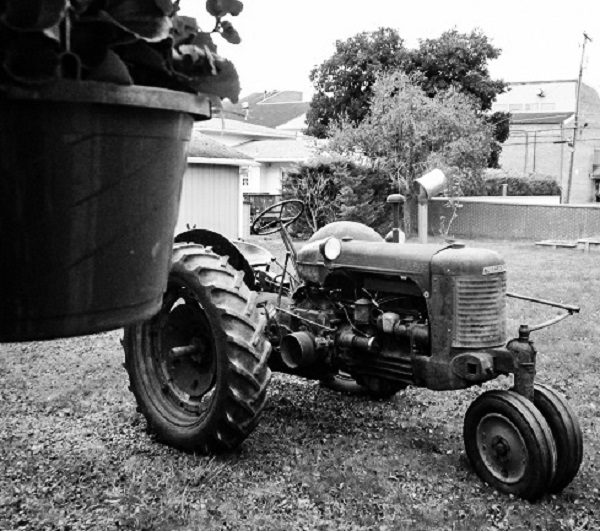 Domesticated Tractor by DG