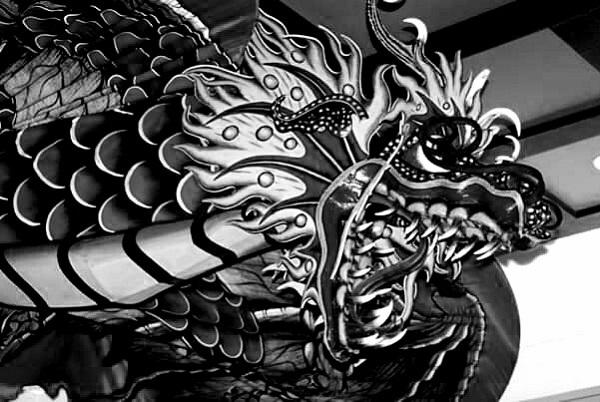 Dragon Surprise by Freewayriding