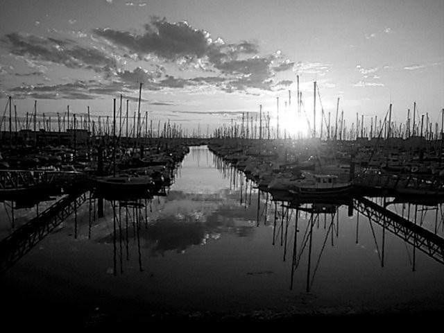 Marshcape by FWR