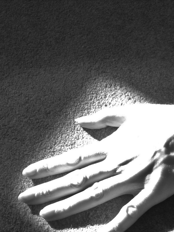 Hand in Shadow by SashaQ