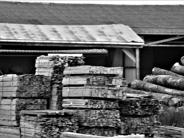 Stacked Wood by bobstafford