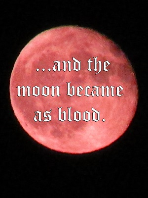 End of days, or a blood moon