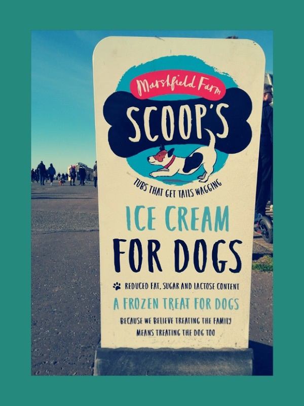 Doggie Ice Cream for Sale by Cactuscafe