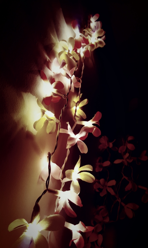 Playful Lights by Cactuscafe