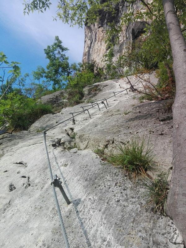 Mountain Climbing by Caiman Raptor Elk