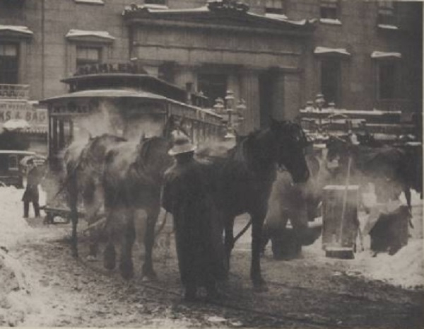 Horses at the Terminal by Alfred Stieglitz