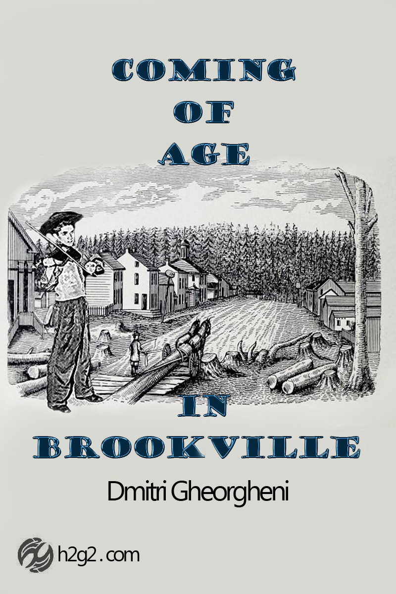 Coming of Age in Brookville, cover design by Freewayriding