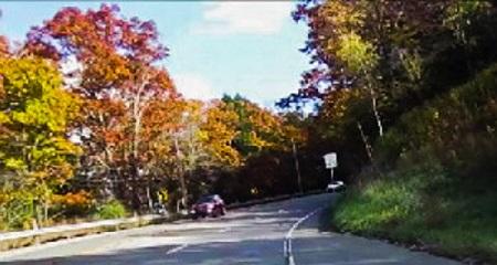 Autumn Road by Elektra Gheorgheni