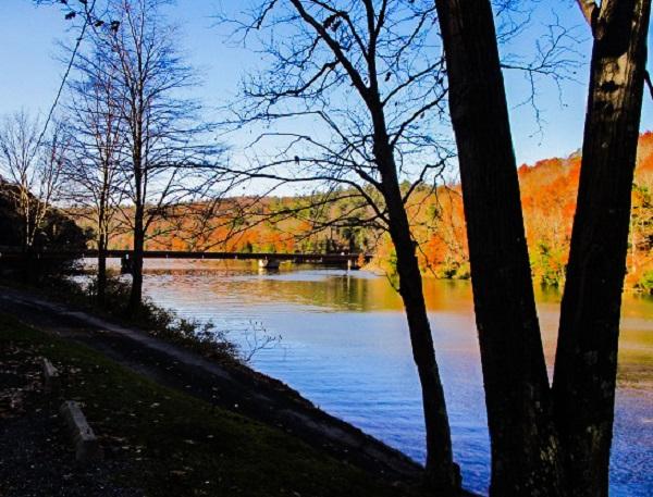 River in Autumn by Dmitri Gheorgheni