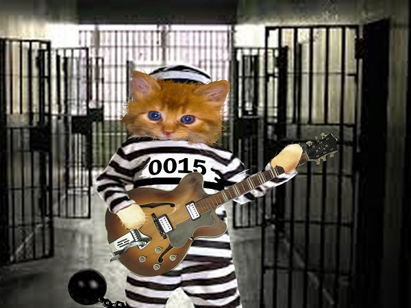 Kitten in a little striped suit playing a guitar and singing in jail. By Freewayriding.