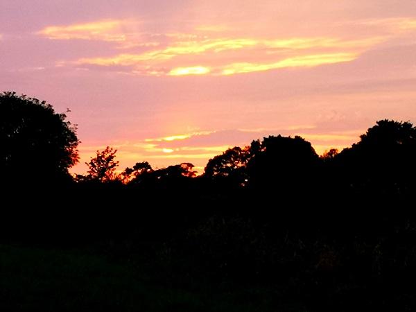 Evening Walk, by FWR.