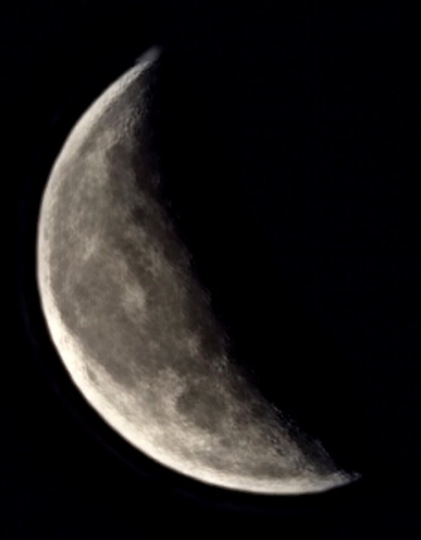 Remarkably detailed photo of the quarter waning moon. FWR says it's not bad for a phone camera.