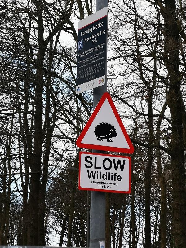 Slow Wildlife Sign by Freewayriding