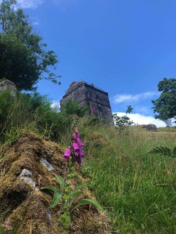 Purple flowers in the foreground, castle keep up the hill in the background. By Galaxy Babe's daughter.