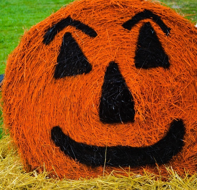A haybale painted like a jack-o-lantern, for no discernable reason other than that Pennsylvania farmers have a weird sense of humour.