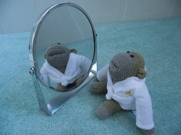 PG Tips Monkey admiring his reflection.