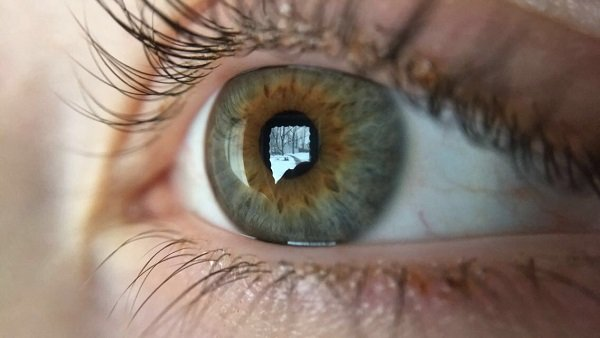 An eye with a reflected snow scene.