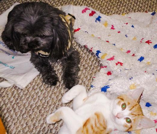 Lola and TJ