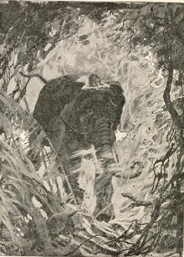 Mowgli on an elephant
