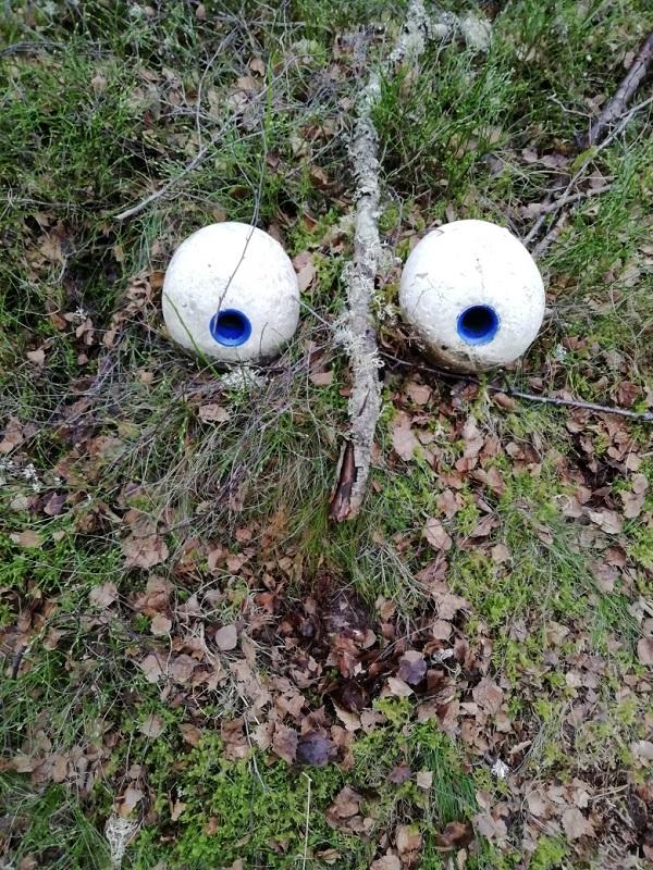 Google Eyes by Paigetheoracle