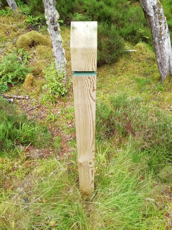Waymarker in the woods by Paigetheoracle. We don't know where he is. He probably doesn't, either. Somewhere in Scotland.