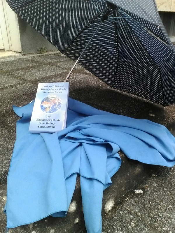 Superfrenchie's Towel Day with new book
