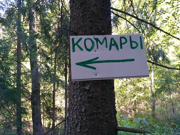 A Russian sign in the woods warning about mosquitos