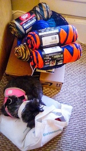 Lola the Wonder Doglet hogs all the yarn.