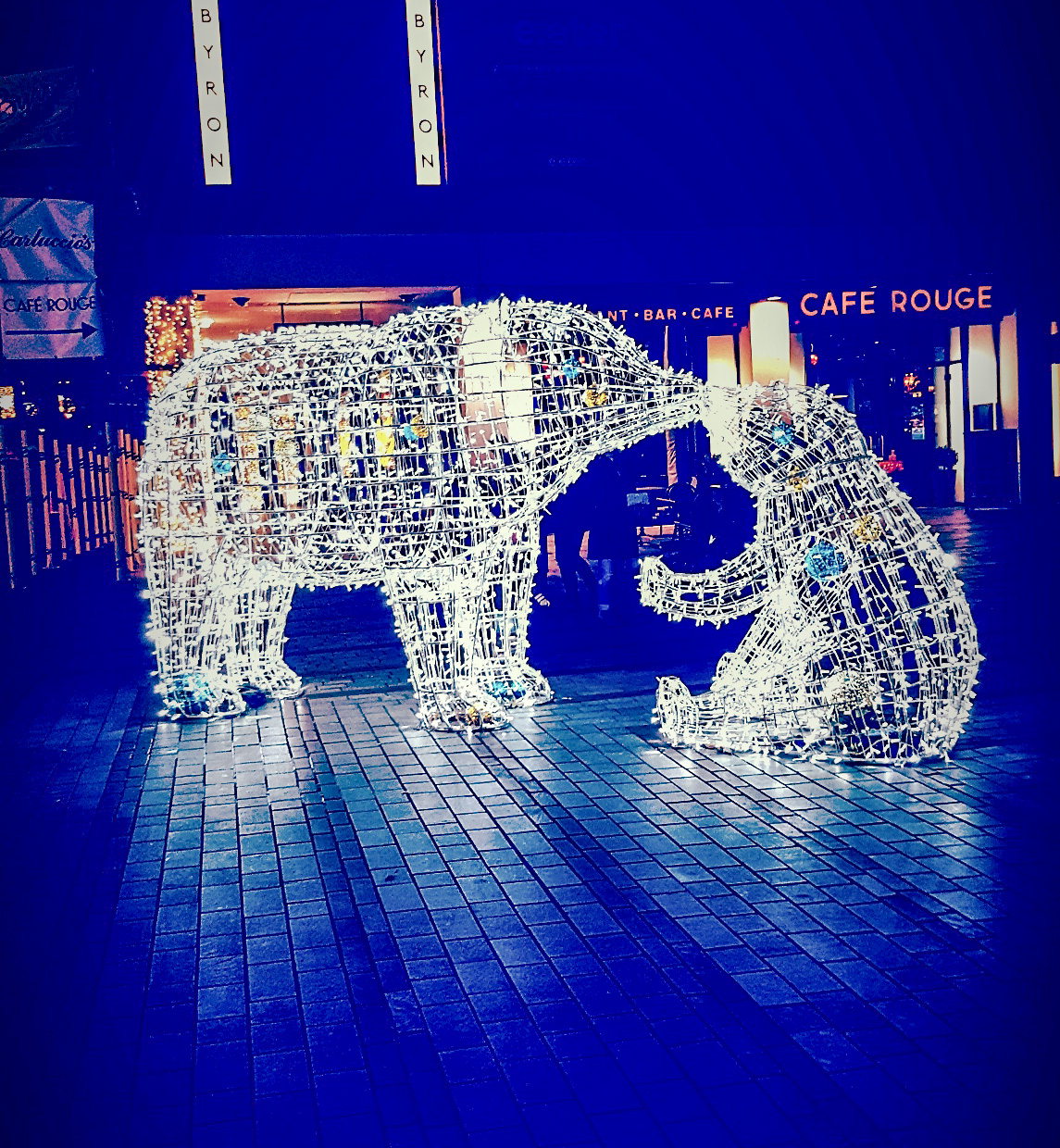 Brightly lit bears in Exeter.