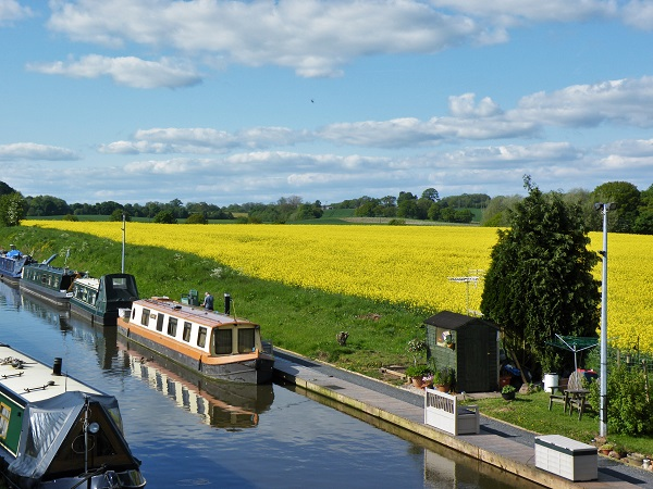 Boats in a Canal by bobstafford