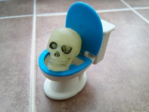 A skull in a toy toilet. Your guess is as good as ours.