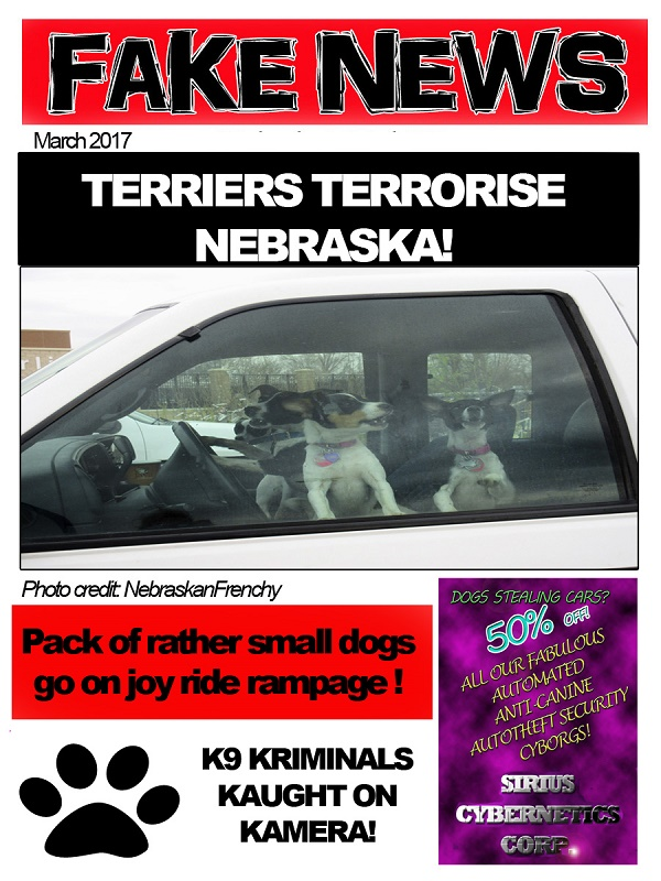 An exciting tabloid cover with fake news about small dogs who steal cars.