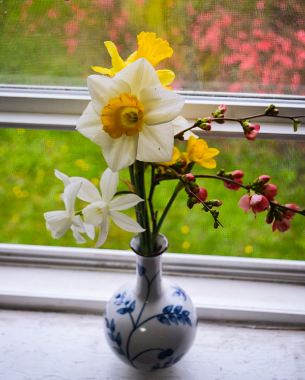 Flowers on a Windowsill by Dmitri Gheorgheni