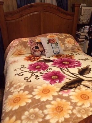 A bed with a flowered quilt and two pillows. One shows a Mason jar and one is shaped like a cat's head.