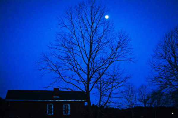 Moon over tree beside house.