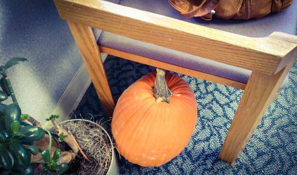 A pumpkin hiding under a chair in the hospital waiting room.