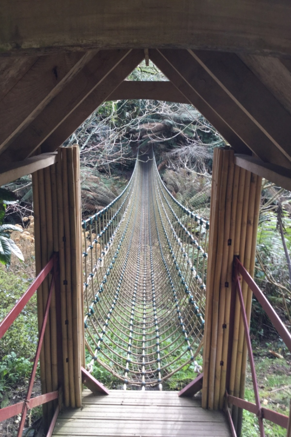 Rope bridge at Heligan.