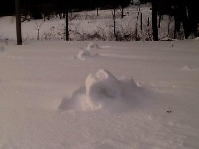 Snow Rollers by Mrs Hoggett
