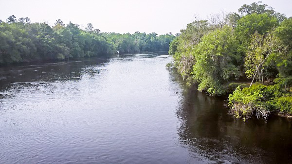 Suwannee River by Florida Sailor