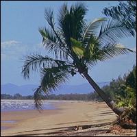 A section of Queensland coastline.