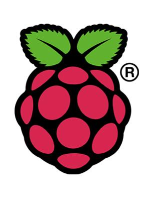 The logo of the Raspberry Pi