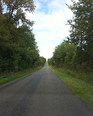 A very straight country road