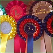 Some rosettes won at a novelty dog show.