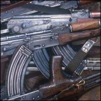 A collection of guns.